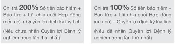 thebank_chitradaohan_1489545772
