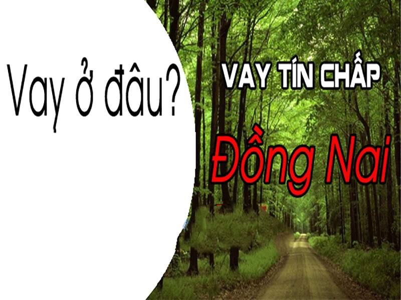 thebank_vaytinchapdongnaiodau_1515719446