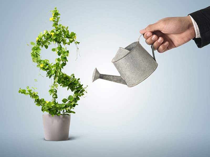 Mức phí bảo hiểm tùy thuộc vào mức mà người mua lựa chọn