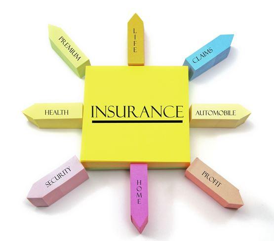 Bảo hiểm có vai trò quan trọng trong sự phát triển kinh tế - xã hội Việt Nam
