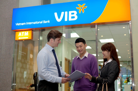 Image result for vib