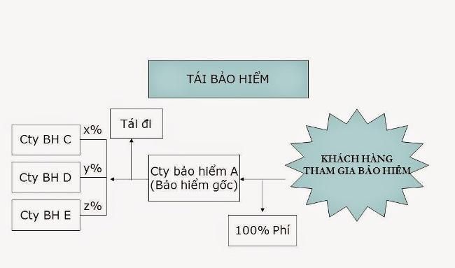 tai-bao-hiem